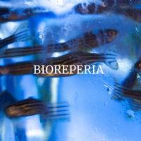 BioReperia biotech